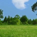 太陽光発電投資ビジネスと農地法の許可